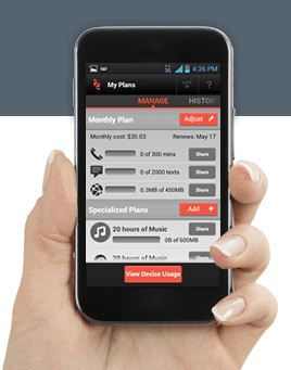 Zact Service - Analie Cruz - Phone in Hand