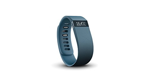 Holiday Gift Guide Fitness Wellness Health - Fitbit Charge   - Analie Cruz