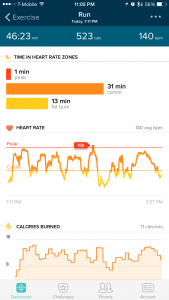 Fitbit Charge HR Activity Tracker Review - HR Zones - Analie Cruz