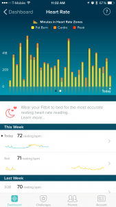 Fitbit Charge HR Activity Tracker Review - Minutes in HR Zones - Analie Cruz